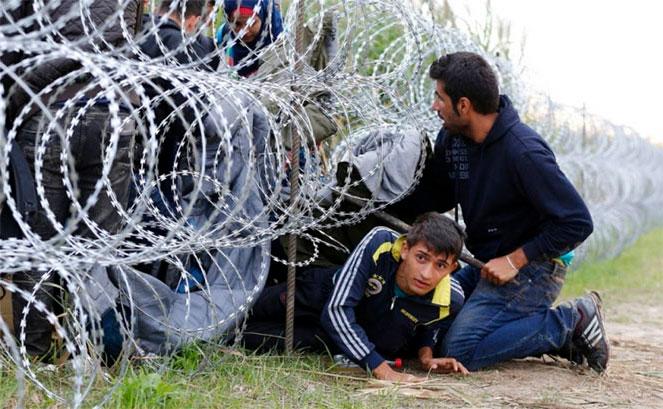 Проблема нелегальной миграции растет