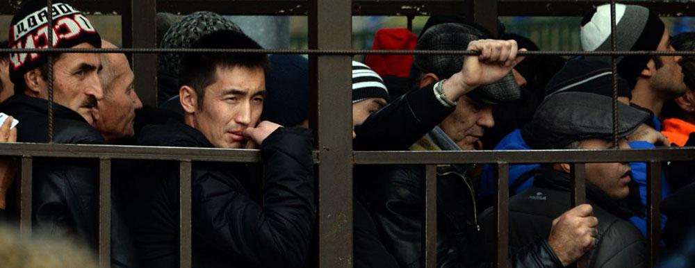 Петербургская Полиция задержала 800 мигрантов после массовой потасовки